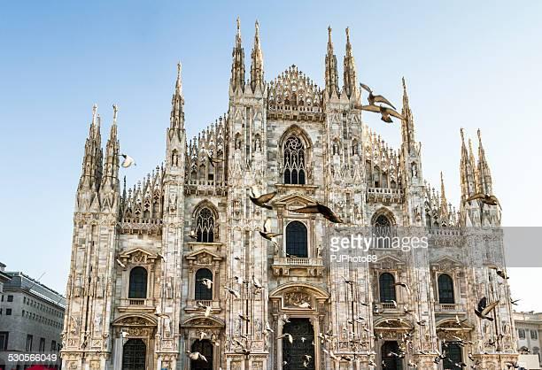 catedral duomo de milán y pigeons - pjphoto69 fotografías e imágenes de stock