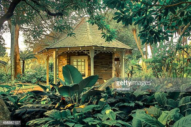 jardins botânicos de durban - jardim botânico - fotografias e filmes do acervo