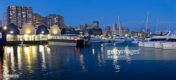 Durban panorama from the docks