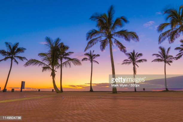 durban sunrise - durban beach stock photos and pictures
