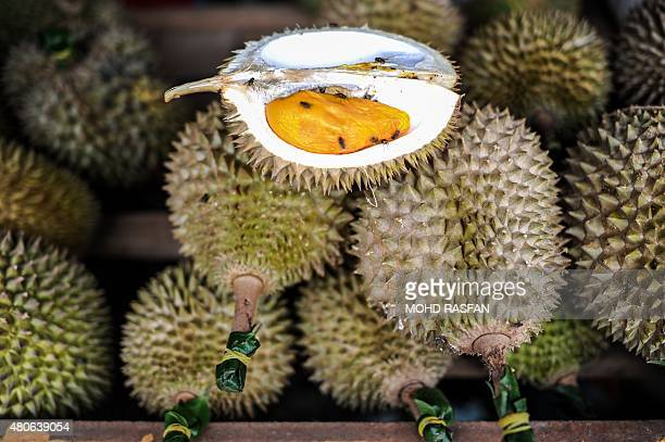 Durian fruits are displayed at a roadside shop in Karak in the suburbs of Pahang outside Kuala Lumpur on July 14 2015 The durian locally known as the...
