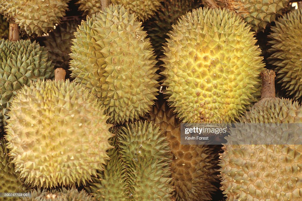 Durian fruits, full frame, (Close-up) : Stock Photo