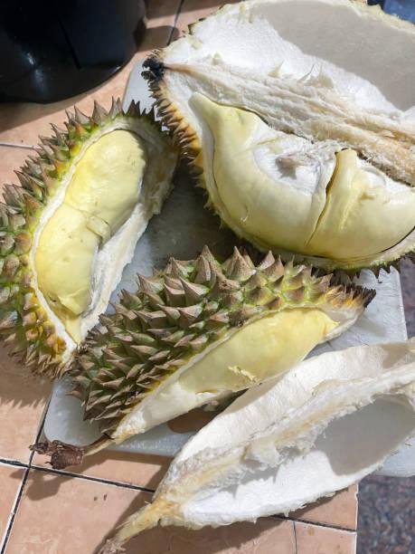 Durian King of Fruit