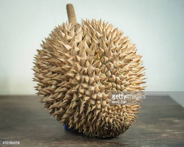 durian - durian stock pictures, royalty-free photos & images