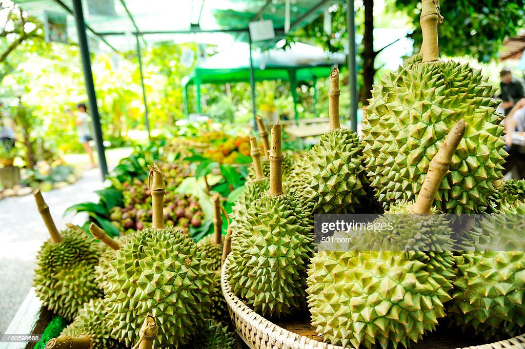 Durian : Stock Photo