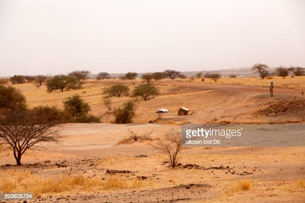 During a medium range patrol from Gao to Menaka a convoy crosses the Sahel desert During a roadbomb search they look at the remains of a previous IED...