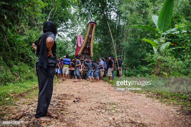 During a traditional ritual funeral of the Tana Toraja the daughter of the deceased walks in front of the weird funeral procession