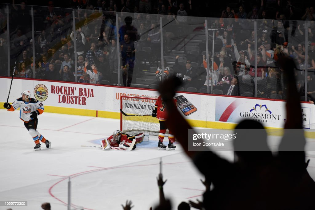 During An Ahl Hockey Game Between The Stockton Heat And The San