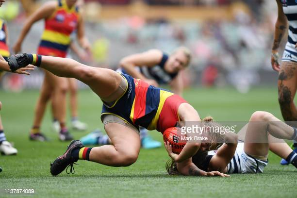 during the AFLW Preliminary Final match between the Adelaide Crows and thew Geelong Cats at Adelaide Oval on March 24 2019 in Adelaide Australia