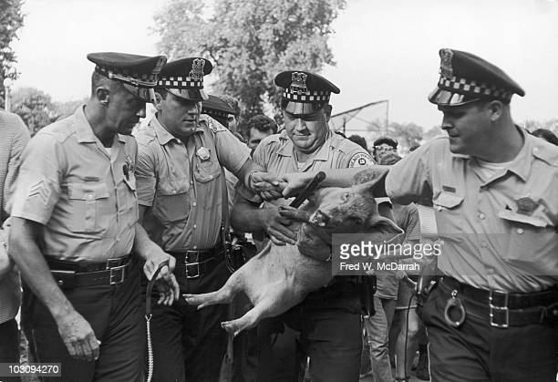 During the Democratic National Convetion a quartet of Chicago police officers capture Pigasus the Yippie candidate for the presidency Chicago...