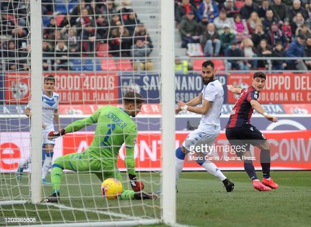 during the Serie A match between Bologna FC and Brescia Calcio at Stadio Renato Dall'Ara on February 01 2020 in Bologna Italy