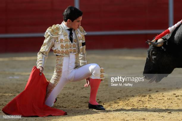 During the third and final stage of the bullfight Torero Fermin Espinoza of Mexico tires the bull out using a red cape at Caliente Plaza de Toros on...