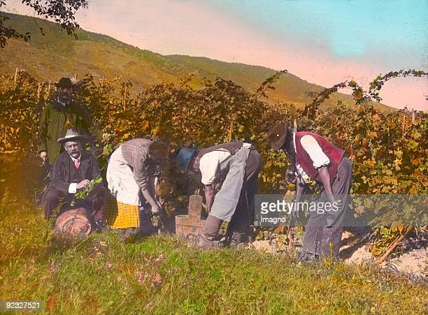 During the vintage Lower Austria Handcolored lantern slide Around 1915