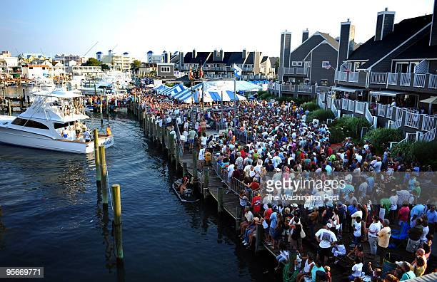 During the White Marlin Open fishing tournament in Ocean City Md the official weighins take place at Harbour Island on 14th street The party...