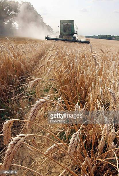 Durum wheat is harvested in Balma near Toulouse France Friday July 20 2007 Wheat futures in Chicago rose to a record extending the rally for a sixth...