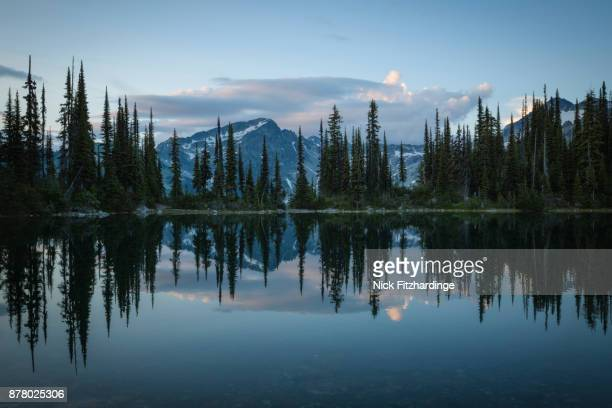 Dusk at Eva Lake, Mt Revelstoke National Park, British Columbia, Canada