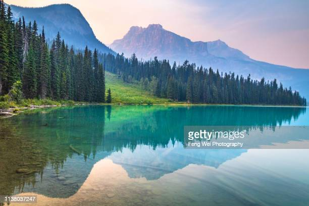 dusk @ emerald lake, yoho national park, british columbia, canada - lake stock pictures, royalty-free photos & images