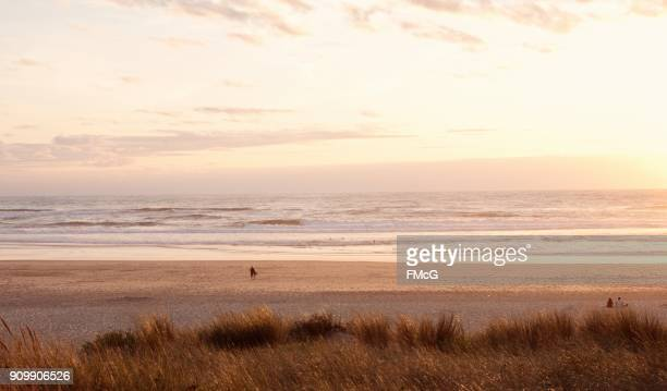 Dusk on Contis beach, Atlantic coast, southwestern France