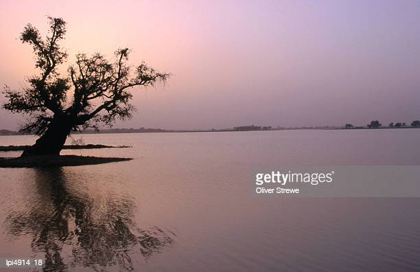 Dusk over Lake Chad, Low angle view, Niger