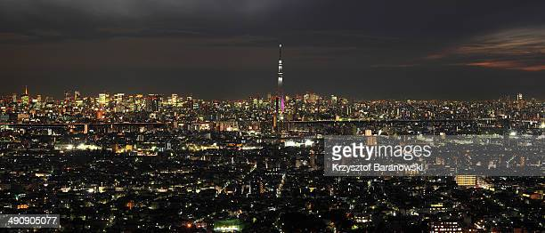 CONTENT] A dusk photo of Tokyo Skyline with Sky Tree Tokyo Tower and Mt Fuji