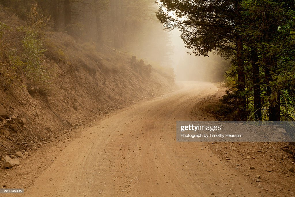 Dust cloud on a dirt road winding through the forest : Stock Photo