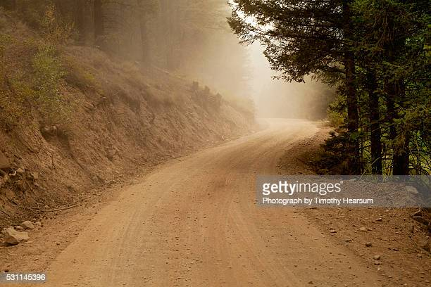 dust cloud on a dirt road winding through the forest - timothy hearsum stock-fotos und bilder