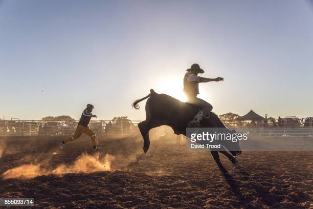 Dust flying at a rodeo in central Queensland, Australia.