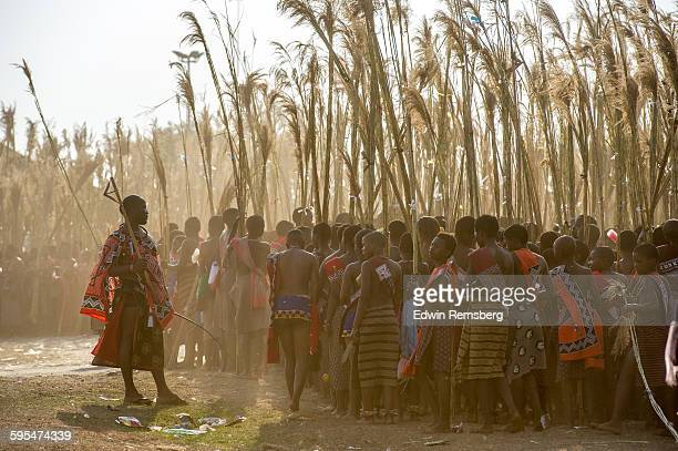 dust of many footsteps - reed dance stock pictures, royalty-free photos & images