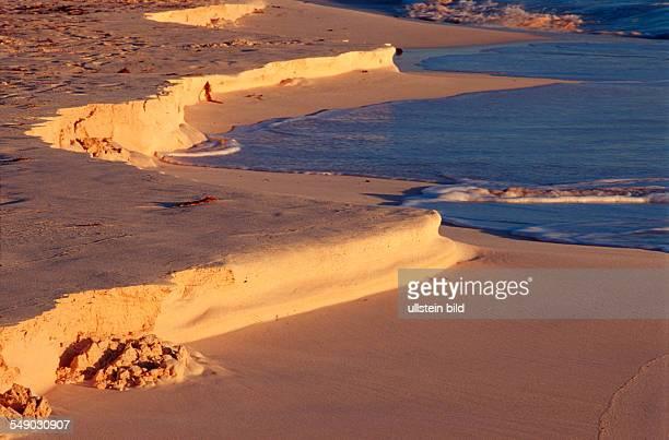 Dust on the sand beach Bahamas Caribbean Sea Grand Bahama