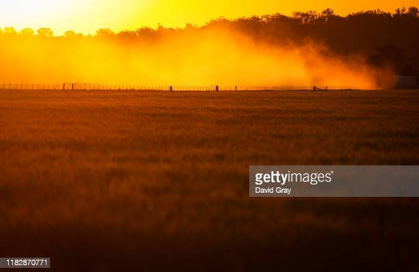 Dust rises in a drought-affected paddock containing a failed wheat crop on farmer Trevor Knapman's property located the outskirts of the...