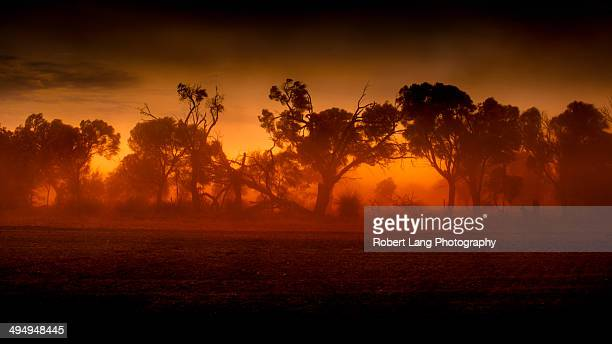 Dust storm on sunset, rural Australia