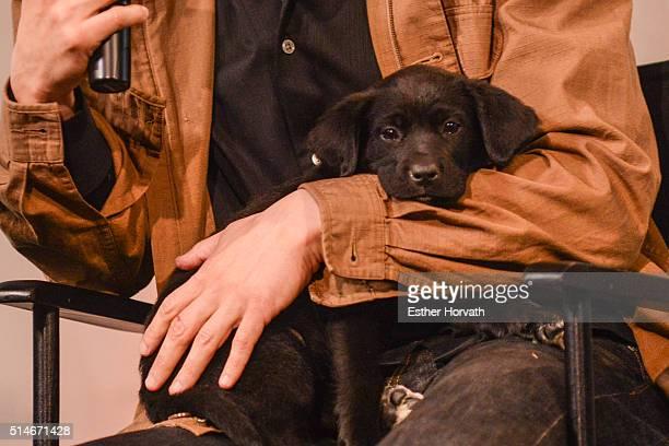 Dustin Feldman attends AOL Build Speakers Series Karissa Hadden and Dustin Feldman Animal Storm Squad at AOL Studios In New York on March 10 2016 in...