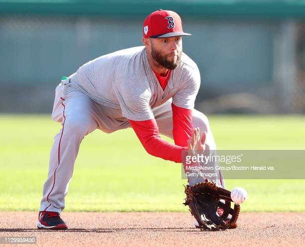 Dustin Pedroia of the Boston Red Sox fields a ground ball during a spring training workout in Fort Myers Florida on February 15 2019