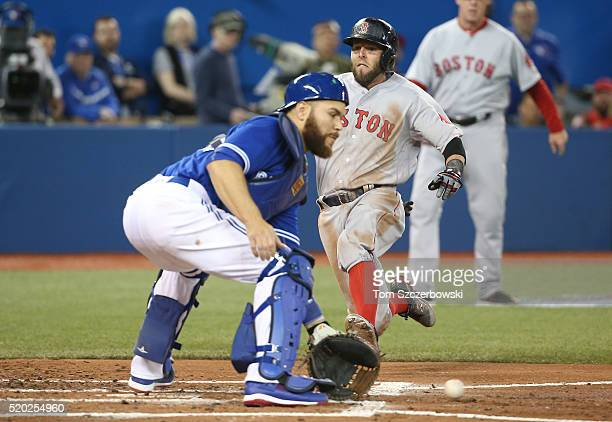 Dustin Pedroia of the Boston Red Sox is thrown out at home plate in the third inning during MLB game action as Russell Martin of the Toronto Blue...