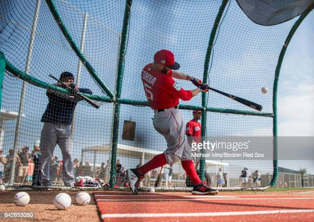 Dustin Pedroia of the Boston Red Sox takes batting practice on February 18 2017 at jetBlue Park in Fort Myers Florida