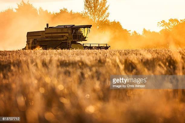 Dusty combine harvester silhouette