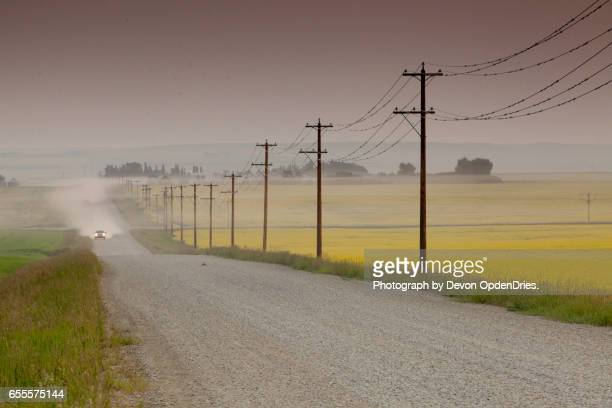 Dusty Road by Canola