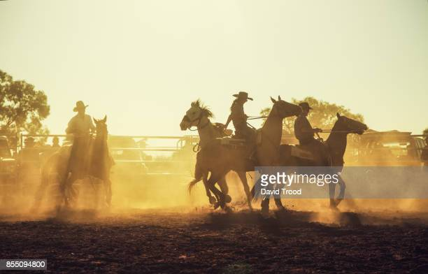A dusty rodeo in central Queensland, Australia.