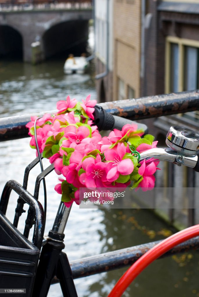 Dutch bicycle with plastic roses on handlebars next to canal : Stock Photo