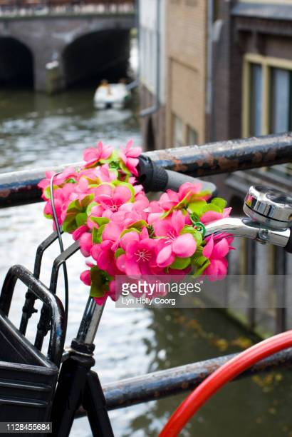 dutch bicycle with plastic roses on handlebars next to canal - lyn holly coorg stock pictures, royalty-free photos & images