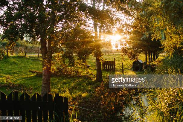 dutch countryside - kamperen stock pictures, royalty-free photos & images