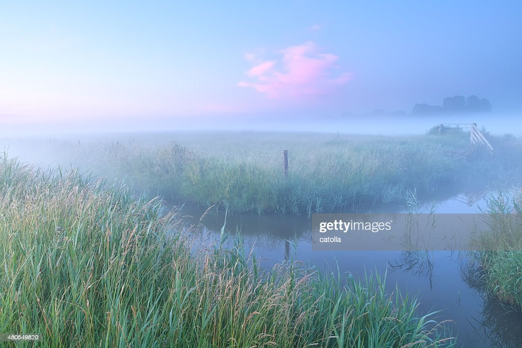 Dutch farmland con río en la niebla de la mañana : Foto de stock