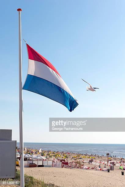 dutch flag half mast - half mast stock pictures, royalty-free photos & images