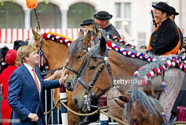 Dutch King WillemAlexander pets a horse on June 21 2013 Middelburg in Zeeland province the last stop of the Dutch royals' tour to all 12 Dutch...