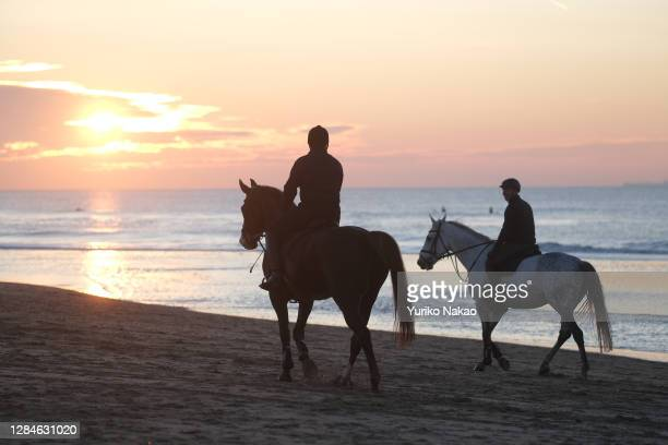 Dutch King Willem-Alexander rides a horse along the sea shore as sun sets on November 6, 2020 in Katwijk, Netherlands.