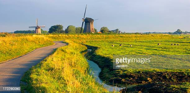 dutch landscape - ditch stock photos and pictures