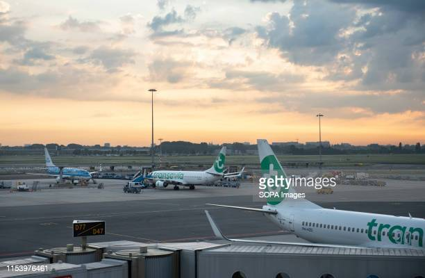 Dutch lowcost airline Transavia airline plane at the Amsterdam Schiphol Airport runway
