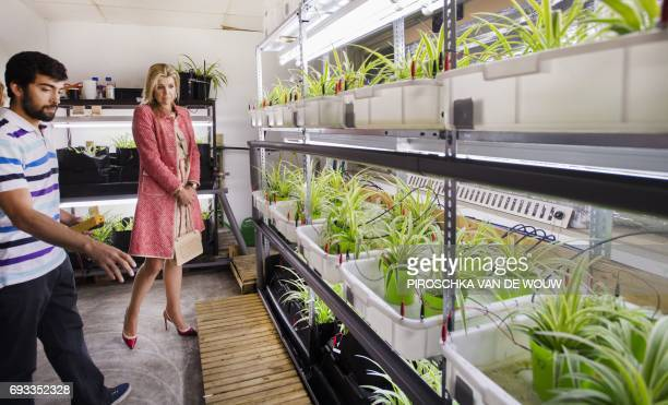 Dutch Queen Maxima visits Plante a sustainable startup which develops products that generate electricity from plants in Wageningen the Netherlands on...