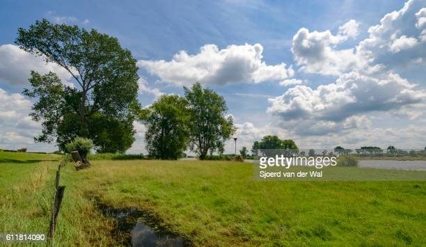 Dutch river landscape at the IJssel