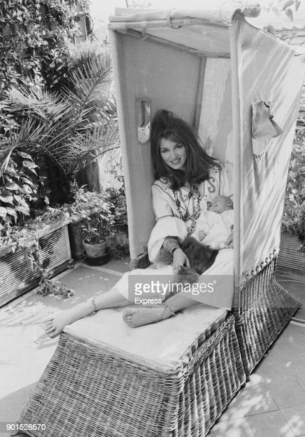 Dutchborn actress and model Talitha Getty second wife of John Paul Jetty Jr with their son Tara Gabriel Gramophone Galaxy and a cat Rome Italy 21st...
